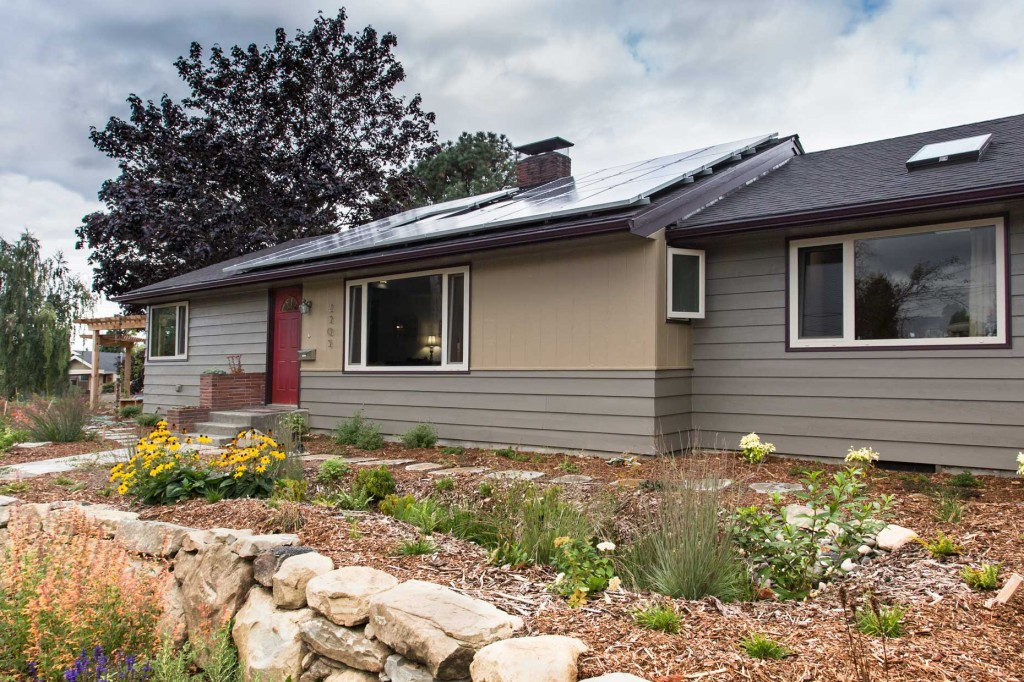Solar panels and rain garden