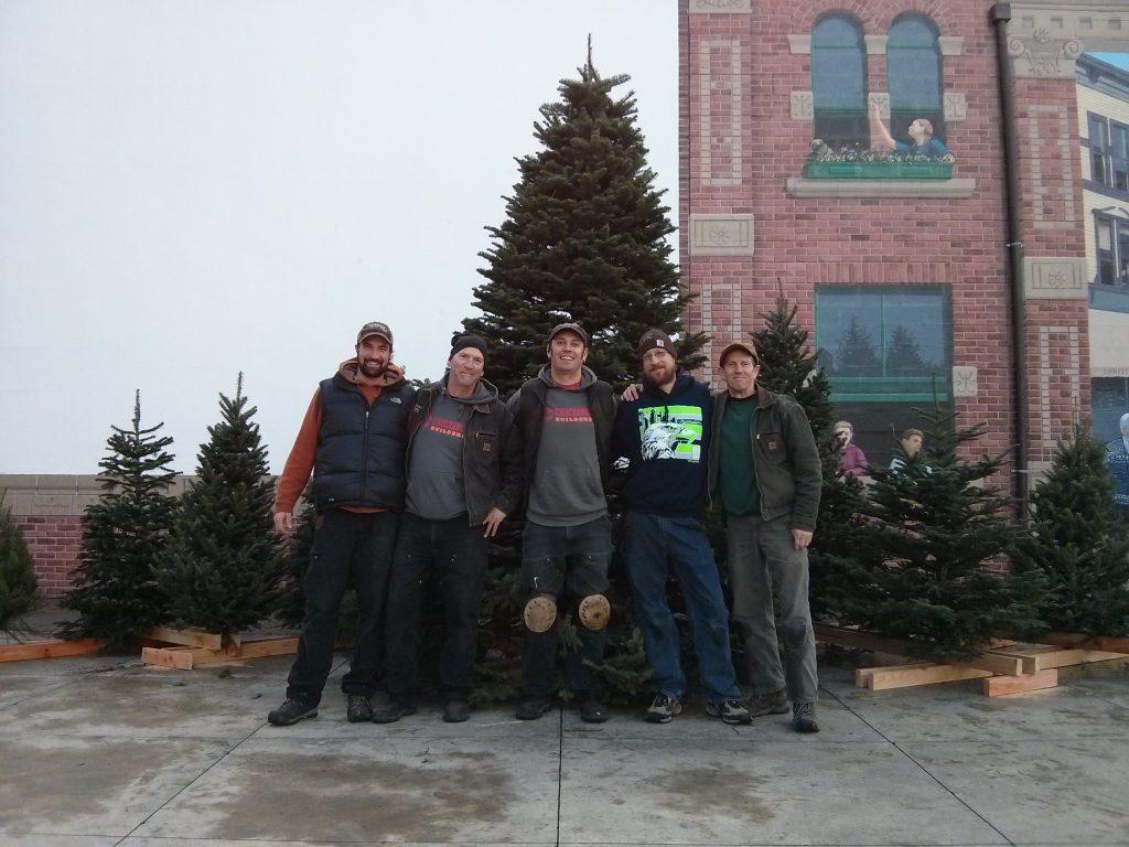 Fair haven Christmas Trees